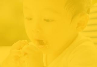 Baby led Weaning & Alimentación Complementaria
